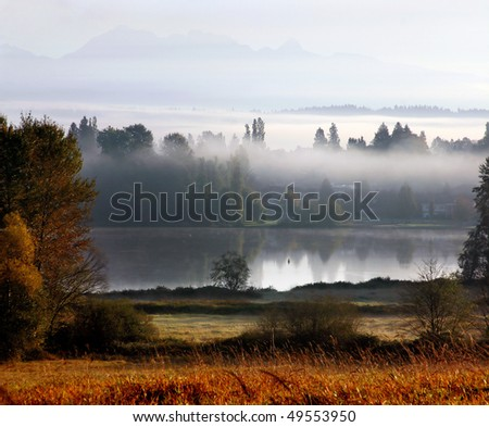 A fog city view in deer lake Vancouver.