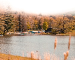 A foggy morning by the lake in Allegany State Park, with some trees and cabins in the background, expressing autumn colors.