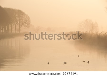 stock-photo-a-foggy-morning-in-a-typically-dutch-landscape-97674191.jpg