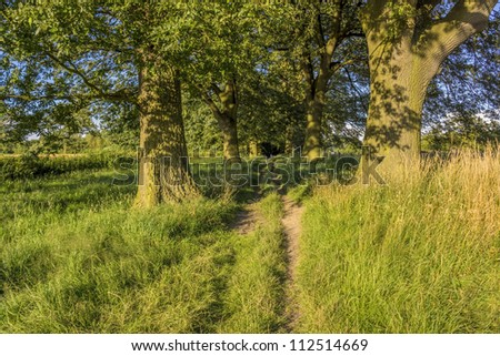 a footpath and public bridleway through the countryside - stock photo