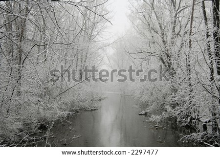 A forest and river photographed during a snow storm.