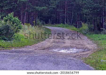 A forest dirt road begins after an asphalt one Foto stock ©
