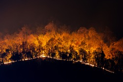 A forest fire on the mountain at night Causing toxic dust