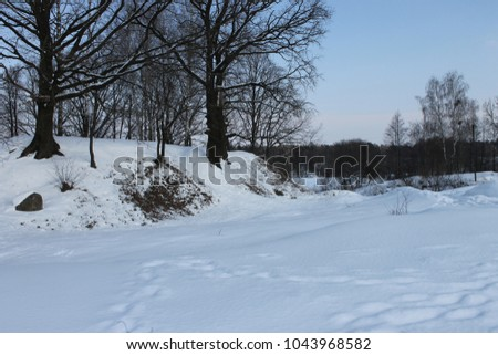 a forest in winter, a winter forest road, a beautiful winter landscape, drowned everything in the snow #1043968582