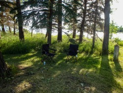a forest with two chairs on the ground in canada