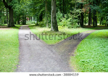 A fork in a country forest road - stock photo