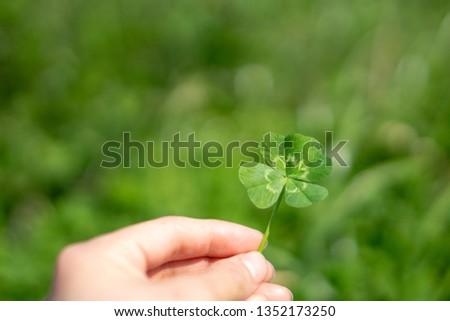 A Four‐leaf Clover #1352173250