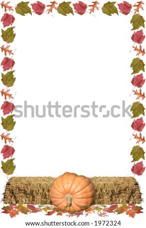 a frame of pumpkins