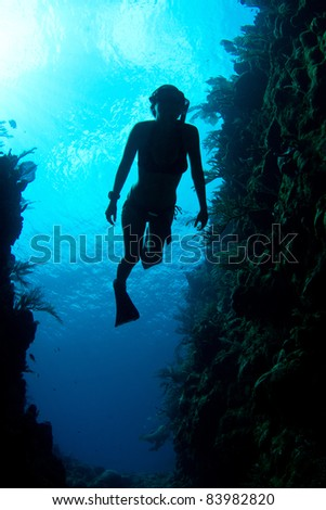 A free diver enjoys the crystal clear Caribbean waters. #83982820