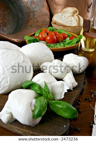 a fresh italian cheese with tomatoes and basil