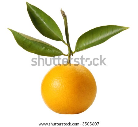 A fresh orange with natural leaves on isolated background path included