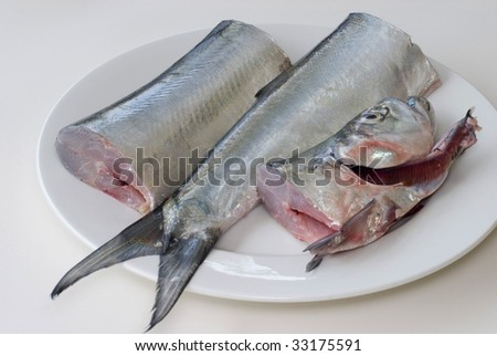 a fresh ribbon fish on a plate, cut into three pieces ready for filleting