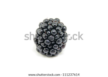 A fresh ripe Blackberry on a white background. - stock photo