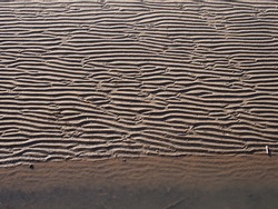 A full frame beach background with wavy pattered surface formed by water on the wet sand and shadow at the edge of the sea