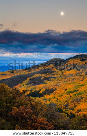 A fullmoon duting the Fall season with yellow aspen forest, Aspen, Colorado