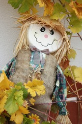 A funny colorful scarecrow wearing a straw hatsurrounded with colorful wine leaves