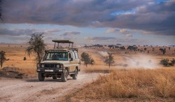 A game drive Safari in Serengeti national park,Tanzania.
