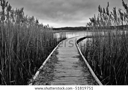 A gangway over a marsh during a cloudy day. Marsh of Pitillas, Navarra (Spain)