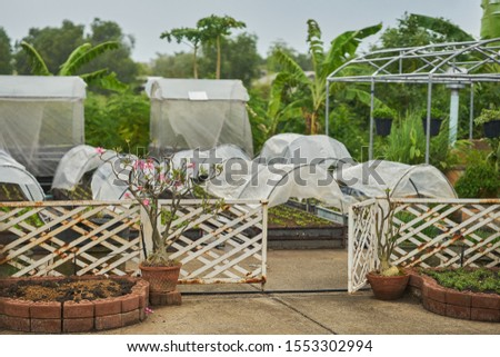 A garden centre with a collection of poly tunnels. #1553302994