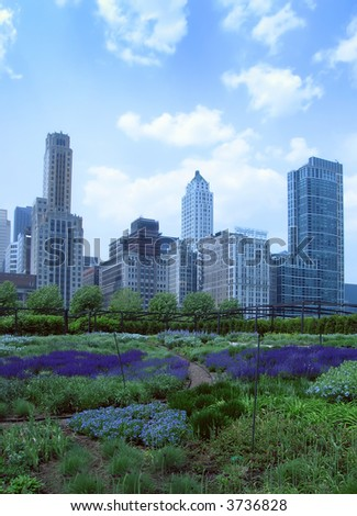 A garden in Chicago's Millennium Park