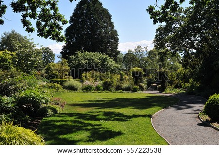 A garden landscape design featuring lawns and conifers #557223538