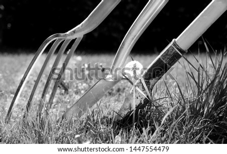 A gardening fork, a gardening spade and a gardening shovel leaning against each other surrounded by grass in a garden, the sun is shining, black and white photograph, horizontal format