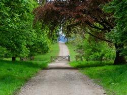 A gated path through the park woodland in Mugdock near Glasgow
