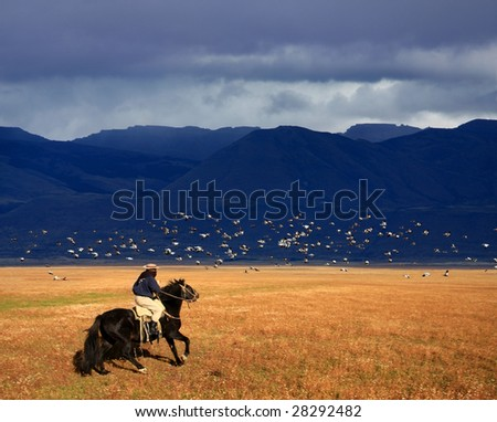 A gaucho riding his horse in Patagonia, Argentina