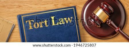 A gavel with a law book - Tort Law Zdjęcia stock ©