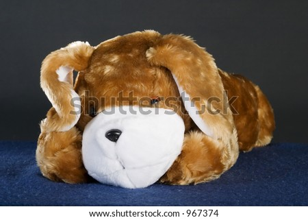 A generic dog stuffed animal posing for the camera.