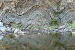 A geological fold in sedimentary rock. The fold is in a cliff above a river. Many layers of sedimentary rock visible. Plants grow from the rock.