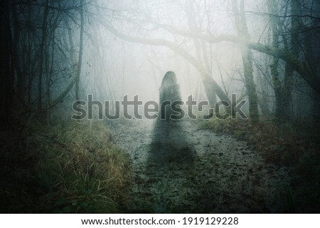 A ghostly transparent woman. Floating above a pond in a forest. On an atmospheric winters day.. With a grunge, blurred vintage edit. Foto stock ©