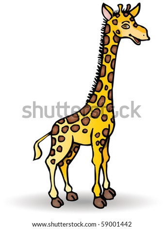 A giraffe isolated on white background,
