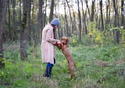A girl and her Hungarian Vizsla (Magyar Vizsla) dog in the forest. The dog is standing on his rear feets and looking to the camera.