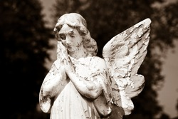 A girl angel praying
