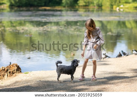 A girl feeds a dog in the park. А girl plays with a dog on the lake shore Сток-фото ©