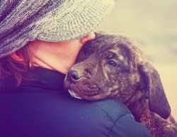 a girl holding a pit bull mix puppy done with a retro vintage instagram filter
