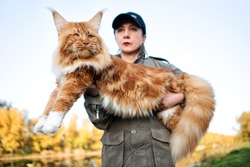A girl holding in arms a huge maine coon cat in forest in fall.
