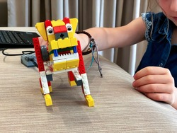A girl is holding a robot lego dog that is programmed by children through coding during a lesson in stem education.