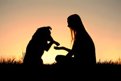 a girl is sitting outside in the grass, lovingly shaking hands with her German Shepherd dog, silhouetted against the sunsetting sky