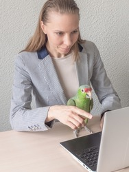 A girl is sitting with a green parrot at the computer discussing a business idea.
