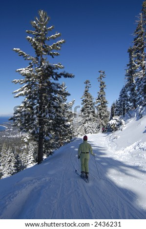 A girl is skiing at lake Tahoe ski resort among snow covered pines with lake itself in the background.