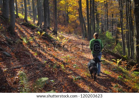 A girl walking her dog in colorful autumn forest in the mountains - stock photo
