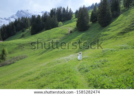 a girl walking in nature