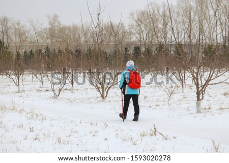 A girl with sticks for Nordic walking, in a sports jacket and with a backpack walks through the forest, view from the back