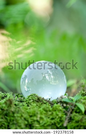 A glass ball on the ground reflecting the forest around it.