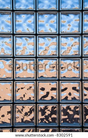 A glass block window looking outside of a custom home shows the dark shrubs at the bottom, the backyard tan wall and the blue sky at the top.