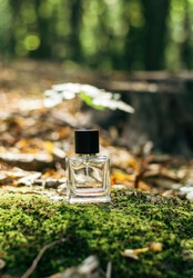A glass bottle of perfume with moss, branches, fallen autumn leaves on a wooden surface against a forest background. Scent of nature. Sunlight