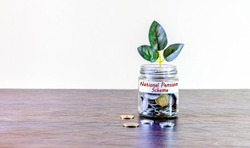 A glass jar full of coins and a plant growing through it. Concept image showing investing in National Pension Scheme can help building wealth.