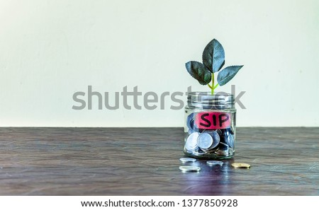 A glass jar full of coins and a plant growing through it. Concept image showing investment via Systematic Investment Plan (SIP) can help building wealth. Stock photo ©